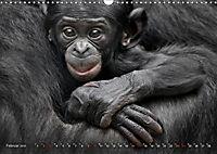 MENSCHENAFFENKINDER 2 (Wandkalender 2019 DIN A3 quer) - Produktdetailbild 2