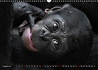 MENSCHENAFFENKINDER 2 (Wandkalender 2019 DIN A3 quer) - Produktdetailbild 8