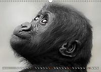 MENSCHENAFFENKINDER 2 (Wandkalender 2019 DIN A3 quer) - Produktdetailbild 7
