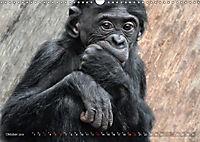 MENSCHENAFFENKINDER 2 (Wandkalender 2019 DIN A3 quer) - Produktdetailbild 10
