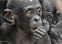 MENSCHENAFFENKINDER 2 (Wandkalender 2019 DIN A3 quer) - Produktdetailbild 12