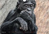 MENSCHENAFFENKINDER 2 (Wandkalender 2019 DIN A4 quer) - Produktdetailbild 10
