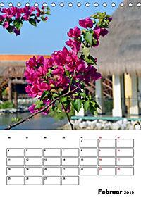 Mexiko - die Karibikküste (Tischkalender 2019 DIN A5 hoch) - Produktdetailbild 2