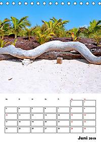 Mexiko - die Karibikküste (Tischkalender 2019 DIN A5 hoch) - Produktdetailbild 6