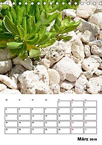 Mexiko - die Karibikküste (Tischkalender 2019 DIN A5 hoch) - Produktdetailbild 3