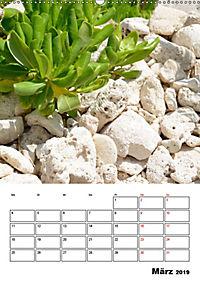 Mexiko - die Karibikküste (Wandkalender 2019 DIN A2 hoch) - Produktdetailbild 3