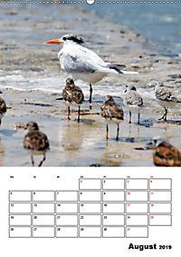 Mexiko - die Karibikküste (Wandkalender 2019 DIN A2 hoch) - Produktdetailbild 8