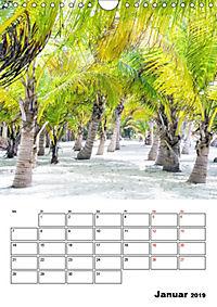 Mexiko - die Karibikküste (Wandkalender 2019 DIN A4 hoch) - Produktdetailbild 1