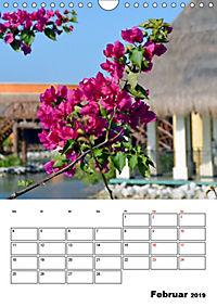 Mexiko - die Karibikküste (Wandkalender 2019 DIN A4 hoch) - Produktdetailbild 2