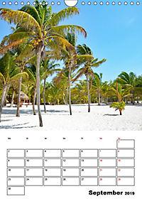Mexiko - die Karibikküste (Wandkalender 2019 DIN A4 hoch) - Produktdetailbild 9