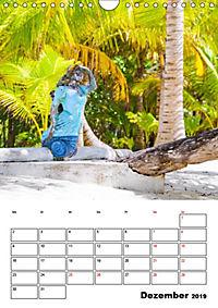 Mexiko - die Karibikküste (Wandkalender 2019 DIN A4 hoch) - Produktdetailbild 12