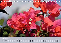 Mexiko - ein traumhaftes Paradies (Tischkalender 2019 DIN A5 quer) - Produktdetailbild 3