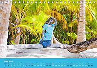 Mexiko - ein traumhaftes Paradies (Tischkalender 2019 DIN A5 quer) - Produktdetailbild 6