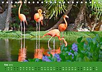 Mexiko - ein traumhaftes Paradies (Tischkalender 2019 DIN A5 quer) - Produktdetailbild 5
