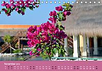 Mexiko - ein traumhaftes Paradies (Tischkalender 2019 DIN A5 quer) - Produktdetailbild 11
