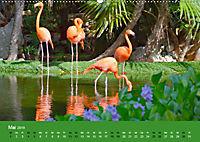 Mexiko - ein traumhaftes Paradies (Wandkalender 2019 DIN A2 quer) - Produktdetailbild 5