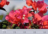 Mexiko - ein traumhaftes Paradies (Wandkalender 2019 DIN A2 quer) - Produktdetailbild 3
