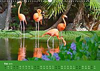 Mexiko - ein traumhaftes Paradies (Wandkalender 2019 DIN A3 quer) - Produktdetailbild 5