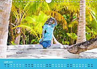 Mexiko - ein traumhaftes Paradies (Wandkalender 2019 DIN A4 quer) - Produktdetailbild 6