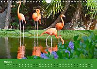 Mexiko - ein traumhaftes Paradies (Wandkalender 2019 DIN A4 quer) - Produktdetailbild 5