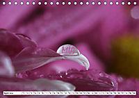 MIA - Namenskalender (Tischkalender 2019 DIN A5 quer) - Produktdetailbild 4