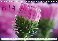 MIA - Namenskalender (Tischkalender 2019 DIN A5 quer) - Produktdetailbild 9