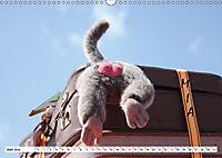 MIA - Namenskalender (Wandkalender 2019 DIN A3 quer) - Produktdetailbild 6