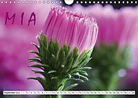 MIA - Namenskalender (Wandkalender 2019 DIN A4 quer) - Produktdetailbild 9