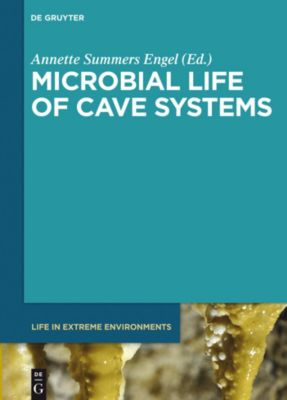 Microbial Life of Cave Systems