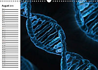 Mikrobiologie. Mikroorganismen, Genetik und Zellen (Wandkalender 2019 DIN A3 quer) - Produktdetailbild 8