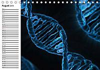 Mikrobiologie. Mikroorganismen, Genetik und Zellen (Tischkalender 2019 DIN A5 quer) - Produktdetailbild 8