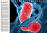 Mikrobiologie. Mikroorganismen, Genetik und Zellen (Tischkalender 2019 DIN A5 quer) - Produktdetailbild 11
