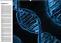 Mikrobiologie. Mikroorganismen, Genetik und Zellen (Wandkalender 2019 DIN A2 quer) - Produktdetailbild 8