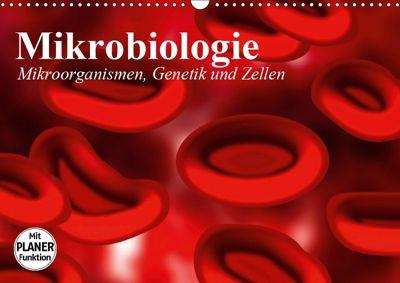 Mikrobiologie. Mikroorganismen, Genetik und Zellen (Wandkalender 2019 DIN A3 quer), Elisabeth Stanzer