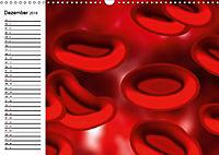 Mikrobiologie. Mikroorganismen, Genetik und Zellen (Wandkalender 2019 DIN A3 quer) - Produktdetailbild 12