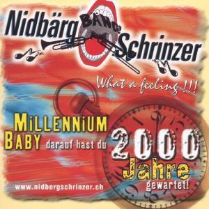 Millennium Baby, Nidbärgschrinzer