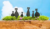"Mini-Stecker ""Katze"", 6er-Set - Produktdetailbild 1"