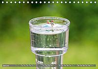 Miniaturfiguren in der Makrowelt ...ganz gross im Garten (Tischkalender 2019 DIN A5 quer) - Produktdetailbild 6