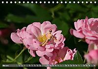 Miniaturfiguren in der Makrowelt ...ganz gross im Garten (Tischkalender 2019 DIN A5 quer) - Produktdetailbild 5
