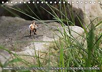 Miniaturfiguren in der Makrowelt ...ganz gross im Garten (Tischkalender 2019 DIN A5 quer) - Produktdetailbild 10