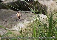 Miniaturfiguren in der Makrowelt ...ganz gross im Garten (Wandkalender 2019 DIN A2 quer) - Produktdetailbild 10