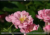 Miniaturfiguren in der Makrowelt ...ganz groß im Garten (Wandkalender 2019 DIN A2 quer) - Produktdetailbild 5