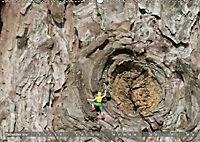 Miniaturfiguren in der Makrowelt ...ganz groß im Garten (Wandkalender 2019 DIN A2 quer) - Produktdetailbild 12