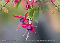Miniaturfiguren in der Makrowelt ...ganz gross im Garten (Wandkalender 2019 DIN A3 quer) - Produktdetailbild 3