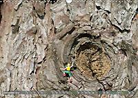 Miniaturfiguren in der Makrowelt ...ganz gross im Garten (Wandkalender 2019 DIN A3 quer) - Produktdetailbild 12