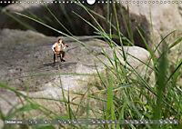Miniaturfiguren in der Makrowelt ...ganz gross im Garten (Wandkalender 2019 DIN A3 quer) - Produktdetailbild 10