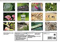 Miniaturfiguren in der Makrowelt ...ganz gross im Garten (Wandkalender 2019 DIN A3 quer) - Produktdetailbild 13