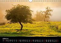 Mist in the Landscape (Wall Calendar 2019 DIN A4 Landscape) - Produktdetailbild 6