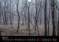 Misty Photography by Luciana Marcu (Wall Calendar 2019 DIN A4 Landscape) - Produktdetailbild 4