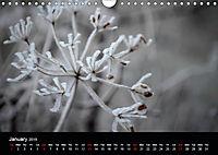 Misty Photography by Luciana Marcu (Wall Calendar 2019 DIN A4 Landscape) - Produktdetailbild 1